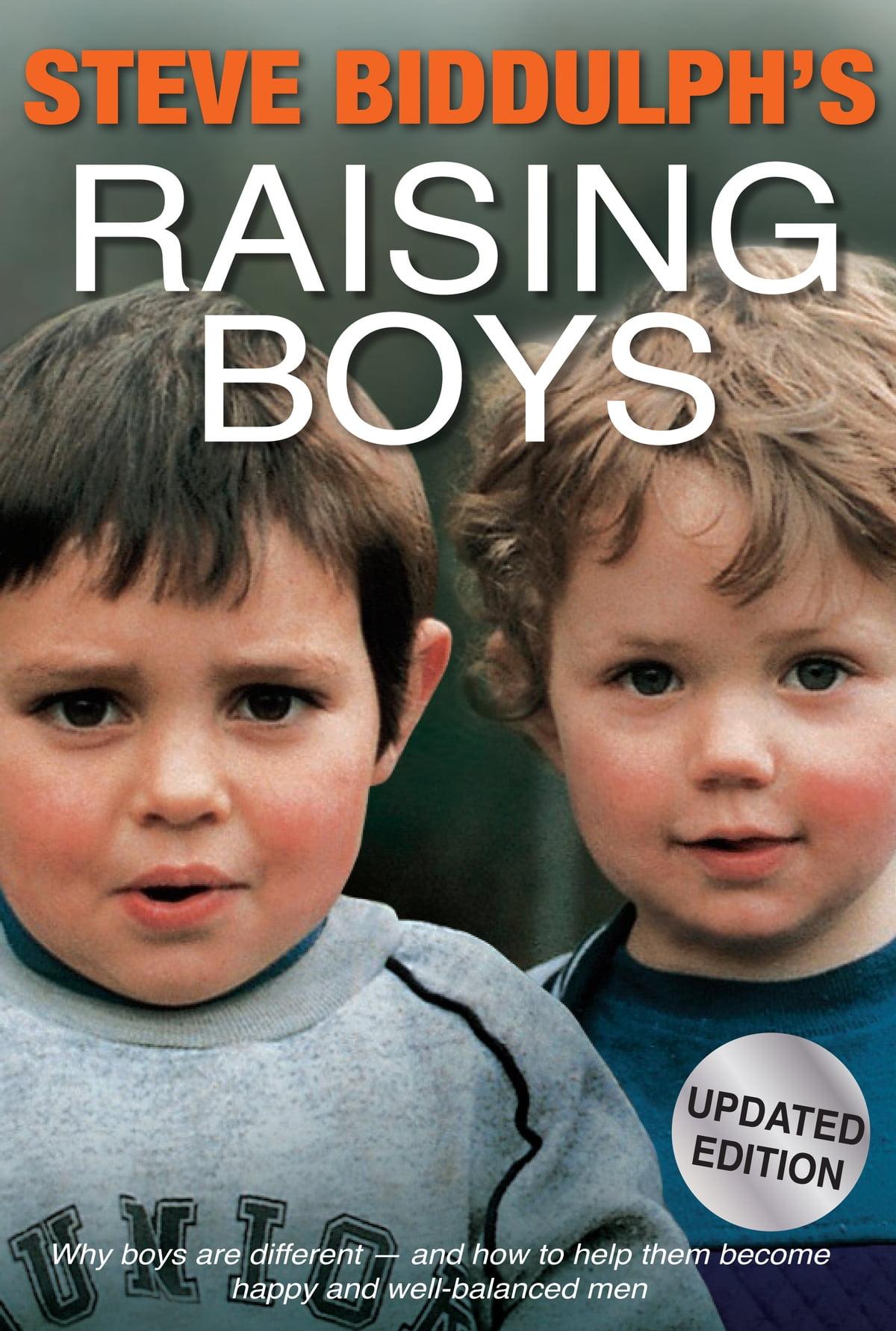 raising boys in the 21st century steve bidduph ebook download