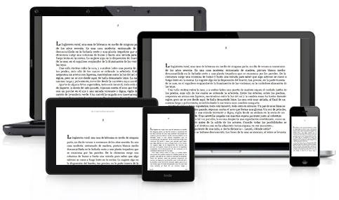 como funciona un ebook kindle
