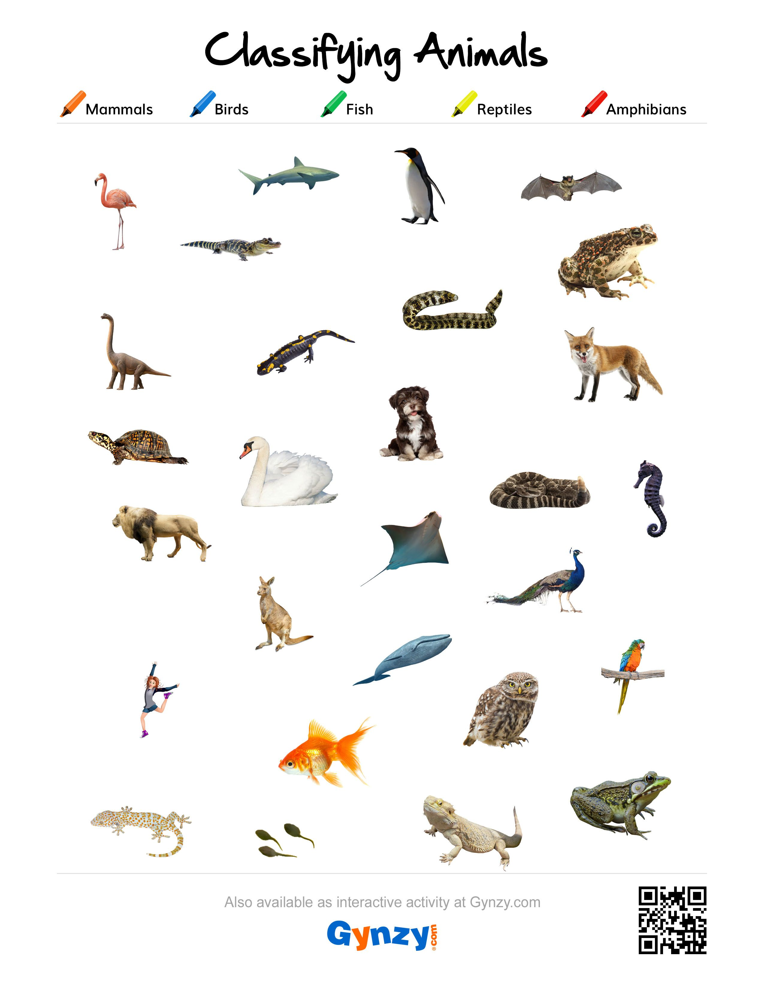 free ebooks fish and reptiles